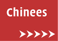 GONLT Link 30x9 Sectie Chinees head site_blog
